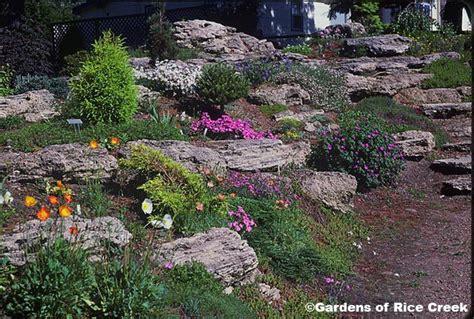 uncluttered rock garden on a slope my flower garden