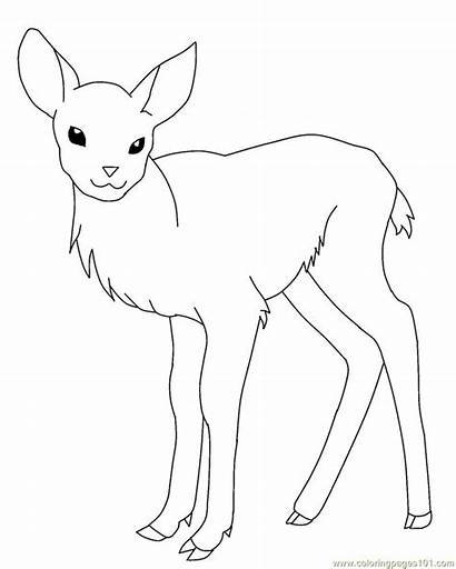 Deer Coloring Pages Printable Coloringpages101