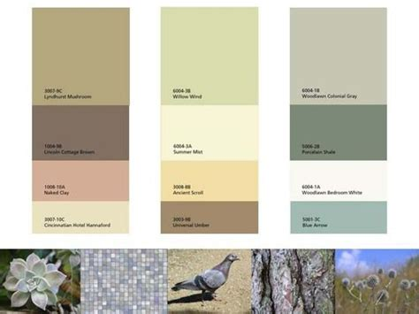 warm natural paint palette mood color boards valspar paint colors warm and