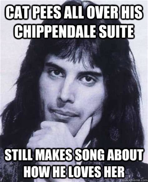 Chippendales Meme - cat pees all over his chippendale suite still makes song about how he loves her good guy
