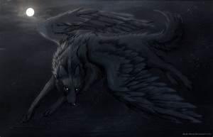 wolves - Wolves Fan Art (20472016) - Fanpop