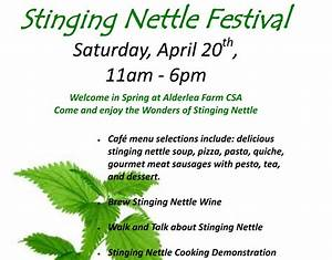Stinging Nettle Festival at Alderlea Farm