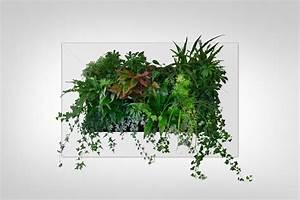 Bilder Mit Rahmen Kaufen : lebende pflanzenbilder kaufen lebende pflanzenbilder mit echten pflanzen online kaufen ~ Buech-reservation.com Haus und Dekorationen