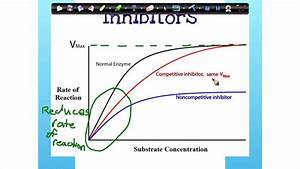 Enzymes -inhibitors  Graph