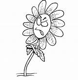 Flower Angry Daisy Coloring Cartoon Clipart Pages Flowers Clipground sketch template