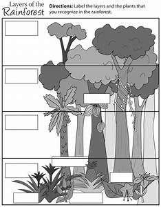 11 Best Images Of Earth Structure Diagram Worksheet