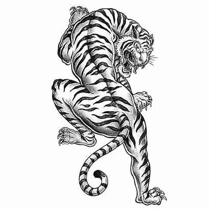 Tiger Coloring Tattoo