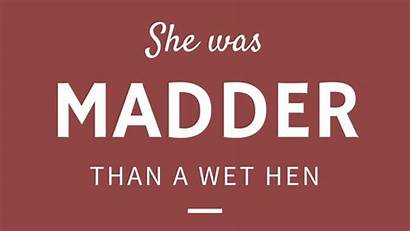 Wet Phrases Madder Southern Hen Than Southerners