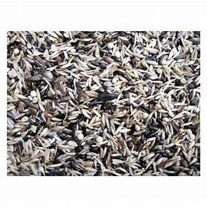 Graines De Tournesol Pour Oiseaux : manitoba m lange de graines carduelidi pour ~ Dailycaller-alerts.com Idées de Décoration