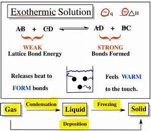 How Do You Know If Its Endothermic Or Exothermic