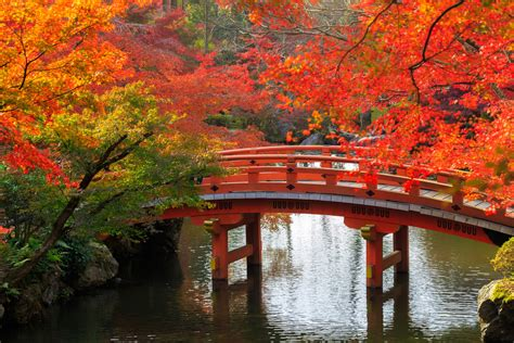bridge  japanese garden  retina ultra hd wallpaper