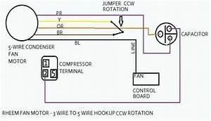 Rheem Capacitor Wiring Diagram