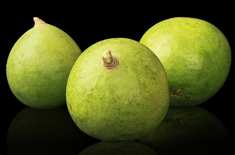 bel fruit rudraksha ratna