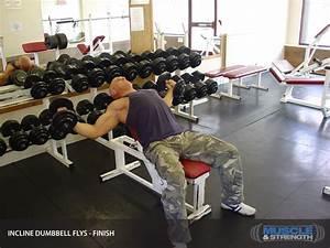 Incline Dumbbell Flys  Video Exercise Guide  U0026 Tips