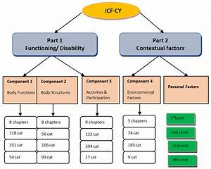 Structure Of The Icf