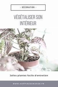V U00e9g U00e9taliser Son Int U00e9rieur Avec Des Plantes Faciles  U00e0