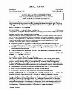 resume writing and resume samples by abilities enhanced to With professional it resume writers