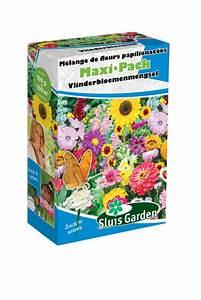 Graines Fleurs Des Champs : acheter bidon melange de fleurs de praires papillon en ligne pour ~ Melissatoandfro.com Idées de Décoration