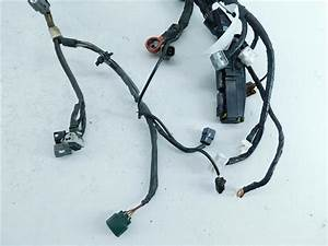 Used Lamp Wire Harness For Sale For A 2006 Nissan Altima