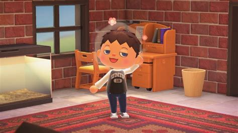 New leaf is dependent on how you answer harriet's questions in the shampoodle salon. Animal Crossing New Leaf Hairstyle Combos / Acnl ...