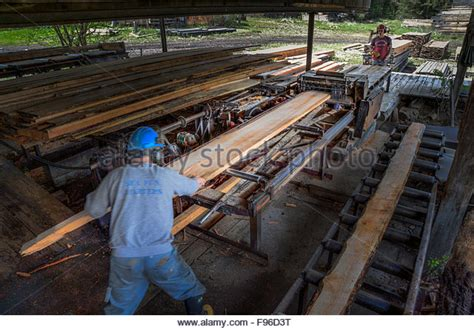 lumber mill related keywords suggestions for lumber mill