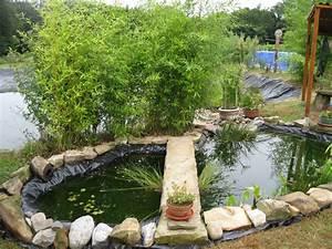Plante Pour Bassin Extérieur : bache pour bassin exterieur bache bassin exterieur sur ~ Premium-room.com Idées de Décoration
