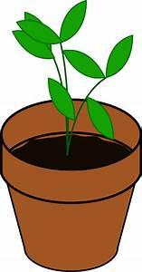 Plant In Pot Clip Art at Clker.com - vector clip art ...