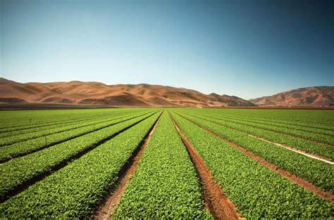 Farm Loans, Agamerica Examples