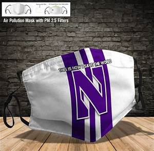 Northwestern Wildcats Face Mask