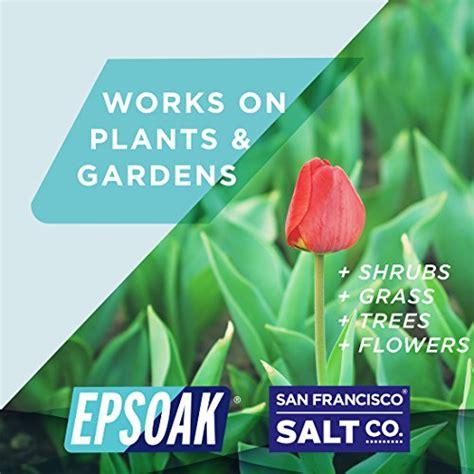 epsoak epsom salt lbs magnesium sulfate usp resealable