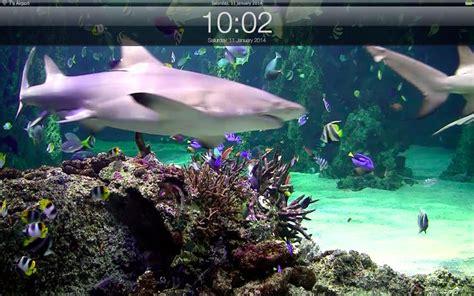 Relaxing Screensaver & Clock On The Mac App Store