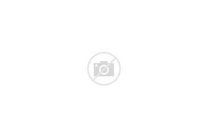 Sign Hollywood Fb January Night Landscape Sky