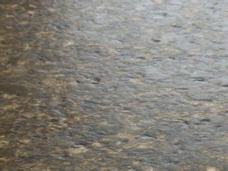 thekitchenshowcaseleathered ubatuba granite denver