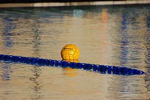 Olympics Total Waterpolo