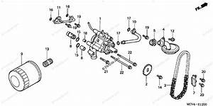 Honda Motorcycle 2003 Oem Parts Diagram For Oil Filter