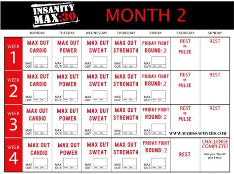 week  review insanity max max  sweat workout