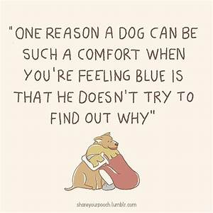 Dog Quotes Tumblr – Quotesta