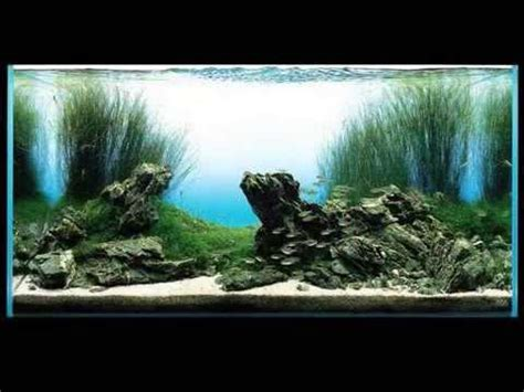 amano aquascape takashi amano aquarium aquascaping