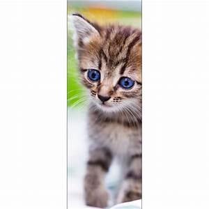 Papier Peint Sticker : papier peint porte d co chat art d co stickers ~ Premium-room.com Idées de Décoration