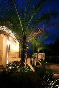 Palmen Für Den Garten : beleuchtung f r den garten clevere tipps zur gartengestaltung ~ Sanjose-hotels-ca.com Haus und Dekorationen