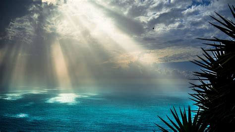 Wallpaper Background Sunrays On Sea 4k Ultra Hd Wallpaper Background Image