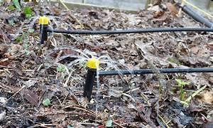 Arrosage Goutte à Goutte Potager : l 39 arrosage automatique du potager le blog du potager d ~ Dailycaller-alerts.com Idées de Décoration