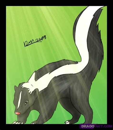 draw  skunk step  step forest animals animals