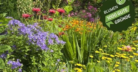 Gewinnspielblumengarten  Mein Schöner Garten