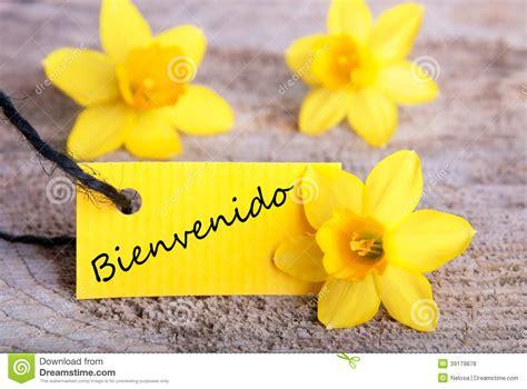 Bienvenido Tag stock photo. Image of french, garden ...