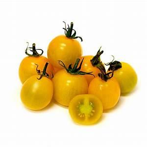 Tomaten Blätter Gelb : gem se schmidt bremen tomaten cherry gelb ~ Frokenaadalensverden.com Haus und Dekorationen