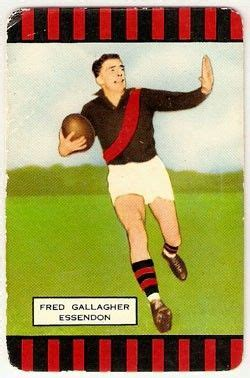 We did not find results for: fred_gallagher_essendon_bombers 1955 | Australian football ...