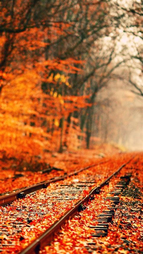 Fall Backgrounds Trendy by Abandoned Railroad Tracks In Autumn Fall Wallpaper