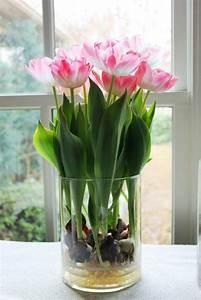 Tulpen In Vase : 52 frische ideen f r zimmerpflanzen ~ Orissabook.com Haus und Dekorationen