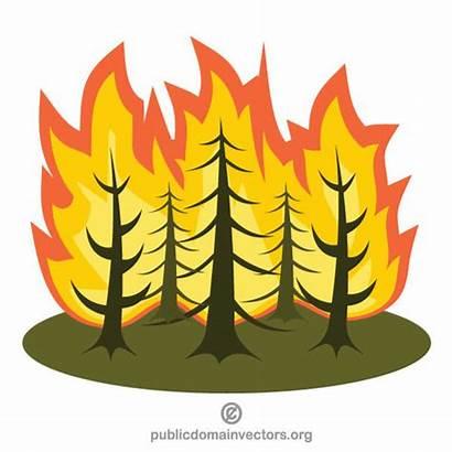 Fire Forest Clipart Hutan Kebakaran Vektor Tree
